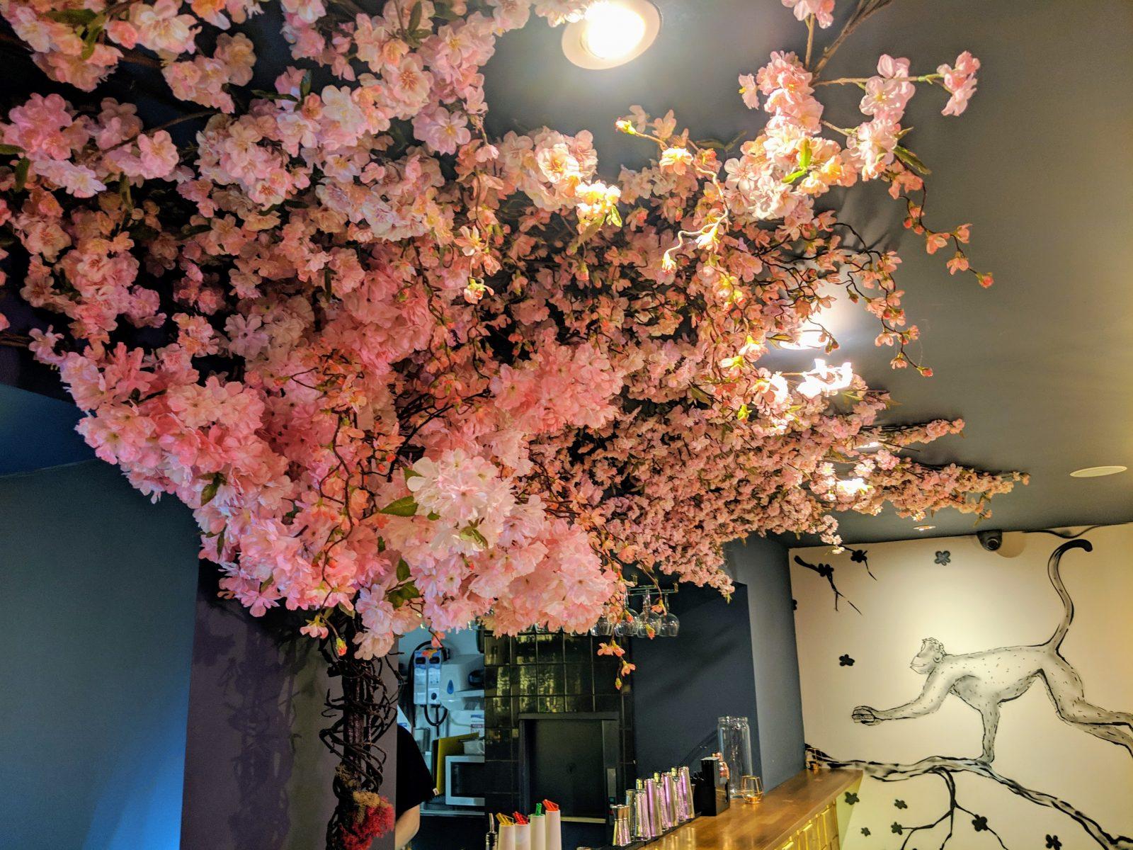 Yen Burger blossom